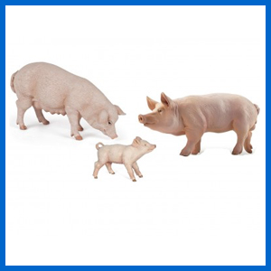 Set of 3 Pigs