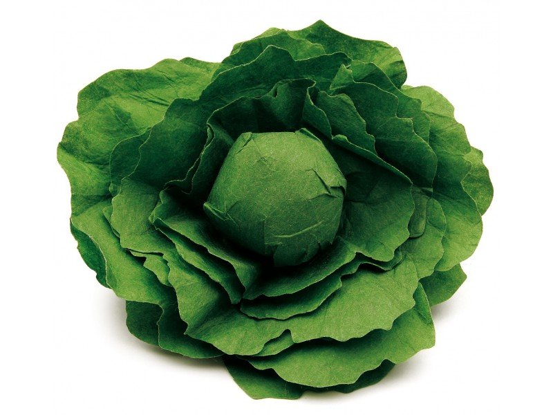 1 x Wooden and Fleece Lettuce