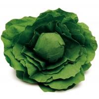 1 x Wooden and Fleece Lettuce