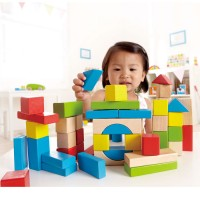 Maple 50 Piece Block Set